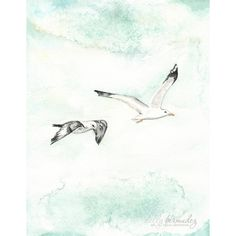 Seagull Serenity No.1 / watercolor print / teal / light green / aqua /... ($20) ❤ liked on Polyvore featuring home, home decor, wall art, mint green wall art, ocean paintings, sea wall art, ocean watercolor paintings and watercolour painting