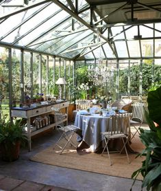 vegetación en casa …