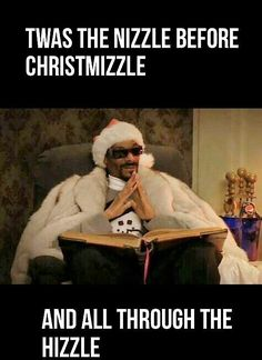 Whether you love it or hate it, the Holiday Season has arrived so get in the spirit with some funny pics.