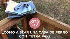 A pesar de que son peludos, ellos también pasan frío 🐶❄️ Aisla sus casitas con el siguiente proyecto 💪 #SodimacHomecenter #DogLover #DIY #HUM #Mascotas #reciclaje