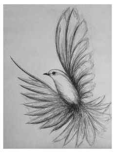 pencil art drawing nature easy