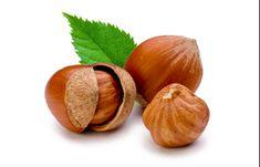Shrubs to Hazelnuts : 24 Steps - Instructables Fruit Plants, Fruit Trees, Hazelnut Tree, Chocolate Hazelnut, Organic Superfoods, Dried Fruit, Food Hacks, Veggies, Teachers