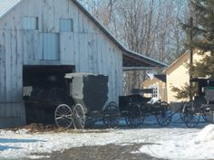 Amish in Northern Maine