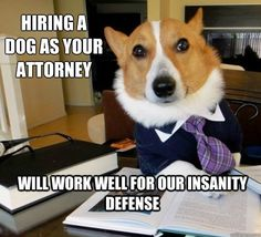 Choose the best lawyer to represent your case.