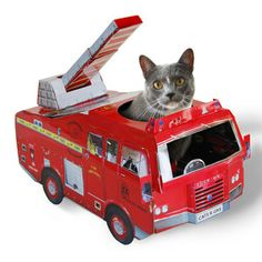 Firetruck Cat Playhouse now featured on Fab.