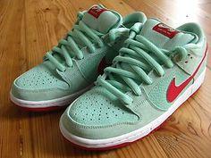 Nike Sb Mint/Gym