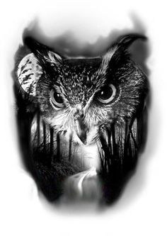 PapiRouge - Tattoo Zeichnungen Owl Tattoo Drawings, Tattoo Sketches, Owl Tattoo Design, Tattoo Designs, Tattoo Ideas, Body Art Tattoos, Sleeve Tattoos, Realistic Owl Tattoo, Wald Tattoo