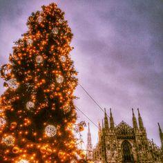 #Natale2015 la #Madonnina e l' #AlberoDiNatale in #PiazzaDelDuomo #DuomoDiMilano #Milano #ViviMilano #Snapseed #MilanoDaVedere @milanodavedere @cittadimilano by effepi72