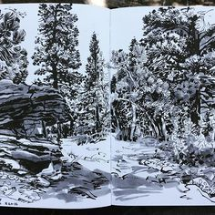 Paul Heaston Sketching on Lookout Mountain this morning. Hero M86 fountain pen…