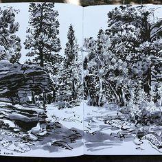 Paul Heaston Sketching on Lookout Mountain this morning. Hero M86 fountain pen…