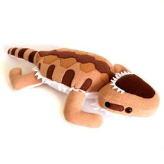 The Lifespan of a Bearded Dragon Depends on Proper Care Pacman Frog, Bearded Dragon Diet, Pet Lizards, Chameleons, Geckos, Reptiles And Amphibians, Soft Sculpture, Stuffed Animals, Plushies