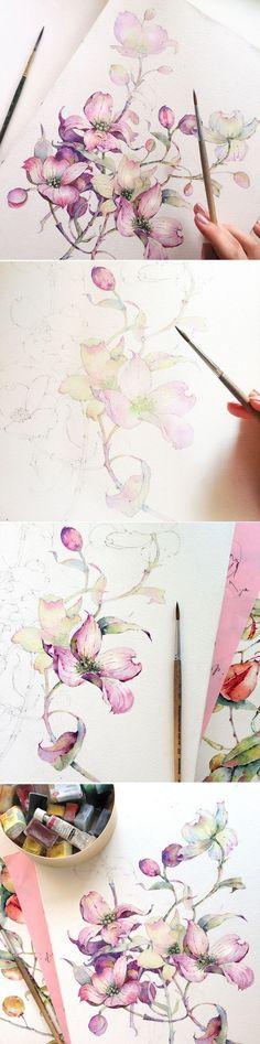 水彩画 教程 俄罗斯画家Katerina...@东篱下采集到植物 手绘(2734图)_花瓣插画/漫画