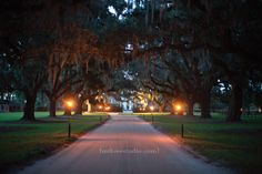 Boone Hall Plantation Wedding    copyright m three studio photography