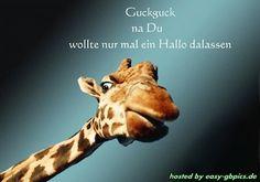 Hallo Gästebuch Bilder - hallo_gbpic_17.jpg - GB Pics