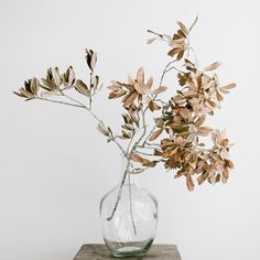 flower pieces, floral decoration for your natural wedding My Flower, Flower Art, Rama Seca, Design Floral, Ikebana, Dried Flowers, Flowers Vase, Planting Flowers, Floral Arrangements