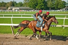 Morning workouts at the Practice Track in Saratoga Springs, NY