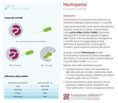 Ematologia in pillole #16 Neutropenia introduzione - Fondazione GIMEMA Onlus
