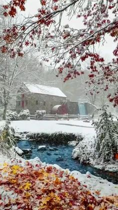 Beautiful Nature Pictures, Nature Photos, Amazing Nature, Beautiful Landscapes, Christmas Scenery, Winter Scenery, Winter Photography, Nature Photography, Beautiful Winter Scenes