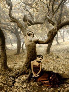 Fallen llamacorns4eva supernatural angel angel forest