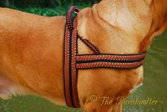 #Paraknotter #Paracord #Dogs #Adjustable #Dogharness