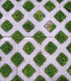 Square Bluestone Pavers With Grass Joints Marolf