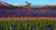 Uco Valley, Mendoza, Argentina