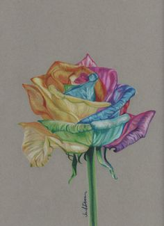 Prismacolor colored pencil Rainbow Rose original by JenniferMDuran,
