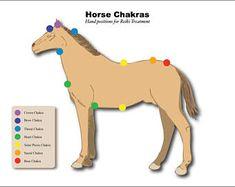 Cheval plastifiée Chakra équine graphiques Reiki à la main des Positions énergie Vortex système de thérapie énergétique de guérison