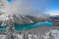 Visited Peyto Lake when it snowed in Banff (Canada), amazing view! (4608x3072) #nature and Science