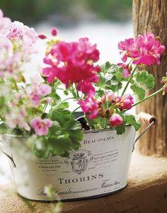 Geraniums in French enamel planter. #wedding