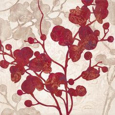 Luscious Orchid 2 - Wall Mural & Photo Wallpaper - Photowall