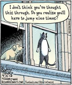 And one for the cat lovers…