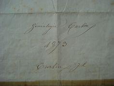 Généalogie Turlin - commencée en 1873...