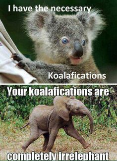 Irrelephant koalafications