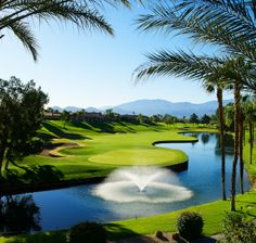 @The Westin Mission Hills Golf Resort & Spa Gorgeous! Pete Dye Championship Golf Course!