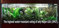 Why not all aquarium LED lights for planted freshwater aquariums are equal