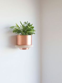 """Our new circular wall mounts are designed to suspend our 8"""" Spun Planters and Spun Bowls. Wall mounted planters make a vibrant accent as singles or multiples. When used with our Spun Bowl, a convenient catch-all accessory tray helps organize entryways and bedrooms. Dimensions 9.3"""" Outer Diameter 6.75"""" Inner Opening Materials Birch wood. Screws and wall anchors included. Tools Needed Drill with Phillips bit. Quarter inch drill bit. Level. Phillips head screwdriver."""