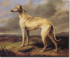 And a good dog (william-barraud-scottish-deerhound-1843).