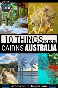 the top things to do in Cairns Australia - explore the Great Barrier Reef, dine and stay in a rainforest treehouse hotel, see waterfalls, beaches, crocodiles, koalas, and more. Cairns Australia Tourist Attractions, Cairns Top 10, Top 10 Cairns Australia
