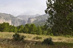 Espubike. Sierra Espuña.