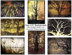 Tree ATC Backgrounds Digital Collage Sheet by moonlightjourney, $3.50