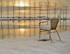 Scatto effettuato all'alba, in un laghetto di pesca sportiva nei pressi di Ferrara Dati exif - diaframma: f6.3, otturatore: 1/750s, iso: 100,