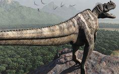 Ceratosaurus nasicornis by paleoguy60, via Flickr