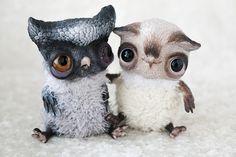 owl buddies by da-bu-di-bu-da on DeviantArt