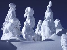 Rime-covered trees -- snow monsters of N Japan