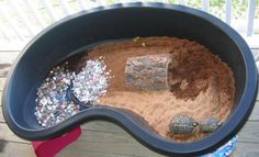 tortoise box | Here is a picture of my new outdoor pen. Gepetto and Horton just love ...