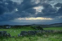 Scotland.  'Broken Wall' Photograph by Maurice Starke, via 500px.  Taken when the night fell and when sheep were still grazing.   The beautiful island of Islay, Scotland.