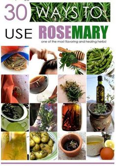 Extraordinary Uses for Rosemary Herb. The plant is one of the recognized herbs for its note-worthy health benefiting phyto-nutrients, anti-oxidants, and essential acids. It is used as decorative plant in gardens and has many culinary and medical uses. Uses For Rosemary, Rosemary Herb, Herbal Remedies, Health Remedies, Natural Remedies, Healing Herbs, Medicinal Herbs, Healthy Life, Healthy Living