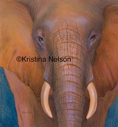 Drawing of an elephant with crayola crayons by Kristina Nelson Crayon Drawings, Crayon Art, Beautiful Artwork, Cool Artwork, Pastel Drawing, 2d Art, Crayons, Wax, Elephant