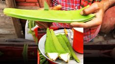 Amazing fastest aloe vera cutting using knife & fork. Aloe juice vendor making & selling aloe vera juice beside the road. An easy way to extract the aloe ver. Green Drink Recipes, Juice Fast, Street Food, Aloe Vera, How To Stay Healthy, Food Videos, Watermelon, Fruit, Ethnic Recipes